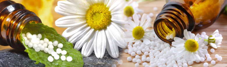 Cell Salts with Daisies