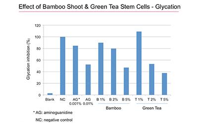 Bamboo Green Tea Stem Cells