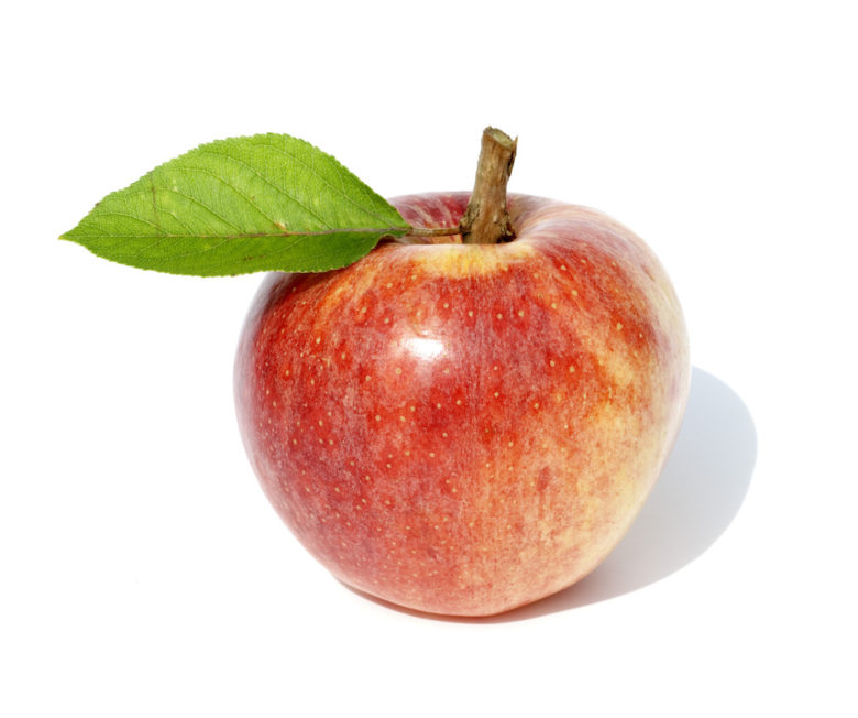 Apple Stem Cells Malus Domestica