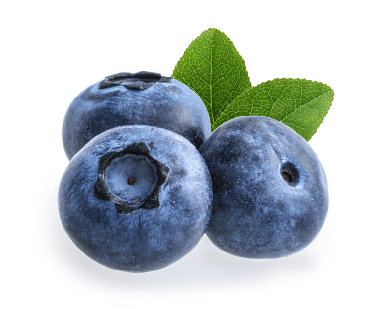Vaccinium Corymbosum Blueberry Seed Oil
