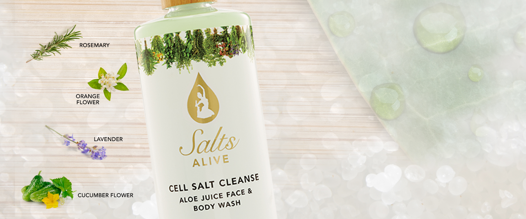 Cell Salt Cleanse Header